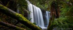 Russell Falls ([v] style + imagery) Tags: tasmania falls mtfieldnationalpark russellfalls waterfalls waterfall hobart