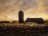 Harvest Sundown (DaraDPhotography) Tags: infrared rural textured lenabemannatextures sundown field silo farm pennsylvania explore sincity exhibitionoftalent awardtree inexplore daarklands magicunicornverybest ie