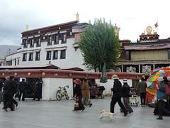 Jokhang Temple, Lhasa, Tibet, China , , ,  (Ronnie_ta) Tags: jokhangtemple lhasa tibet     china