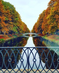 Herbst (kathibro92) Tags: herbst otoño autumn bunt colours bach köln cologne wasser water brücke goldenerherbst