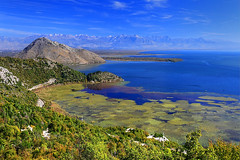 Happy Thanksgiving (hapulcu) Tags: virpazar skadar shkodra lake montenegro crnagora autumn