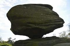 Brimham Rocks (157) (rs1979) Tags: brimhamrocks summerbridge nidderdale northyorkshire yorkshire loversleap