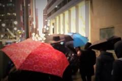 Onward (michael.veltman) Tags: from a walk in the rain chicago illinois umbrellas