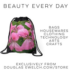 Get these Pink Geranium Drawstring bags and much more at http://ift.tt/1hfrEWq #bags #clothing #home #houseware #technology #iphone #arts #crafts #flowers #garden #nature (dewelch) Tags: ifttt instagram get these pink geranium drawstring bags much more douglasewelchcomstore clothing home houseware technology iphone arts crafts flowers garden nature