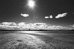 DSC01504 (Damir Govorcin Photography) Tags: sand mud water sun clouds sky canada bay sydney natural light landscape zeiss 1635mm sony a7ii
