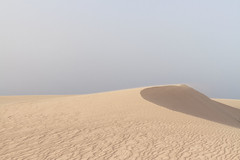 (annadosenes) Tags: landscape photography dunes desert sand travel journey fuerteventura island isle canary islands canarias corralejo dunas sky summer august camera digital explore roadtrip spain europe