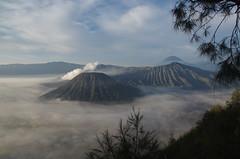 Java (O!i aus F) Tags: java asien osm k5 nationalpark bromo tengger vulkan krater indonesien
