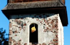 Autumn leaf (evisdotter) Tags: autumnleaf höstlöv ålandsundvårdöförsamling macro bokeh sooc vårdöchurchstmatthias vårdökyrka kyrktorn vårdö åland