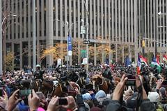IMG_1129 (Michael C Dunne) Tags: macysthanksgivingdayparade sixthavenue avenueoftheamericas manhattan newyorkcity nyc newyorkcitypolicedepartment nypd mounted horse