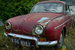 Vergangener Glanz (G_Albrecht) Tags: auto marode oldtimer verkehr vermerk zustand