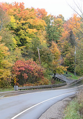 Winding Road (peterkelly) Tags: digital canada northamerica canon 6d ontario fall autumn caledon road colours colors wet rain winding