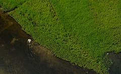 The Farmer (deborshi biswas) Tags: aerial birds eye life light love farmer bangladesh river cultivation