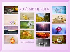 November 2016 at a glance (Elisafox22 catching up ;o)) Tags: elisafox22 november 2016 collage snapshot images summary thumbnails border elisaliddell©2016