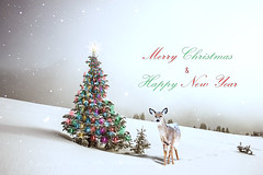 deer (iblushay : Thank you for visiting and the faves) Tags: greet greeting season pine nature sky warm winter silent fun white red green landscape mistletoe love light snow xmas newyear happyholidays tree holiday photomanipulation photoshop deer christmastree christmas christmaslights