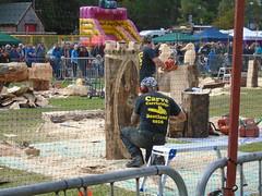 Carrbridge 2016 carve underway