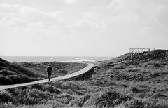 Boardwalk (scott.little) Tags: film 35mm kodak trix4001600 m6 leica 50mm 35mmformat handprocessed naturallight morning tauranga newzealand beach blackwhite portrait child boardwalk epsonv700 filmsnotdead grain balckandwhite bw monochrome mediumformat 120