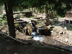 """""""Mosógép"""" (ossian71) Tags: ukrajna ukraine kárpátalja kárpátok carpathians vízpart water folyó river"""