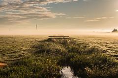 IMG_1710 (meyd451) Tags: watergang countryside morning