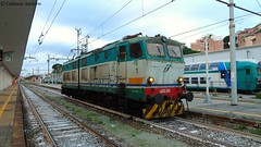 e655-245 (andrewcabassa) Tags: e655 fs cargo locomotore caimano elettrico savona stazione sosta ferroviedellostato trenitalia lis binario8 parcodoria fotocamera dsch400 sony