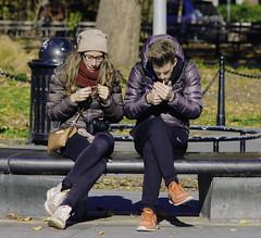 WashSquare_December 03, 2016_8 (M.Cicchetti Photography) Tags: washington square new york city nyc vsco lightroom manhattan park street photography