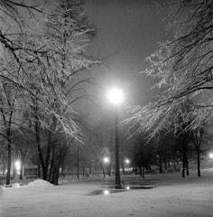 020459 05 (ndpa / s. lundeen, archivist) Tags: nick dewolf nickdewolf blackwhite photographbynickdewolf tlr bw 1959 1950s february winter boston massachusetts beaconhill night nighttime wintersnight park common bostoncommon tree branches snow snowy snowfall trees film 6x6 mediumformat monochrome blackandwhite light lights lamppost benches parkbenches