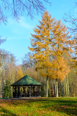 Sol de otoo (Juan Leanez) Tags: otoo hojas velador tranquilidad verde green poland polonia d7100 naranja