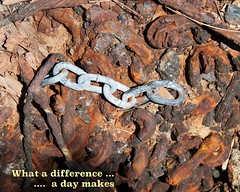 what a difference a day makes (Leonard J Matthews) Tags: rust difference diversity chains metal environment cabbagetreecreek shorncliffe queensland australia mythoto contrast decay whatadifferenceadaymakes song title