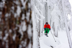 Forest hunting (Jason Hummel Photography) Tags: whitepassskiarea skiresort skiarea washingtonstate winter2016 powder snow snowfall southerncascades cascademountains mountains jas2300 joshhummel jumping jump ski skiing blackandwhite monochrome treeskiing