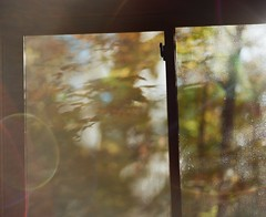 Fall Window (Nick Spadaro) Tags: fall window medium format film pentax 67 ektar color autumn