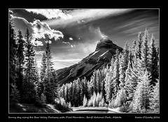 Sunny day along the Bow Valley Parkway with Pilot Mountain, Banff National Park, Alberta (kgogrady) Tags: fall infrared landscape banff alberta canada blackandwhite bowvalleyparkway bw albertalandscapes blackwhite banffnationalpark ab autumn 2016 canadianlandscapes canadianrockies canadianmountains cans2s fujifilm canadianrockieslanscape fujifilmxpro1 fujinon canadiannationalparks clouds westerncanada xf18135mmf3556oiswr xpro1 trees sunny pilotmountain mountain nopeople noone parkscanada