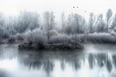 A foggy morning (ramerk_de) Tags: lowerbavaria pond fog straubing hoarfrost