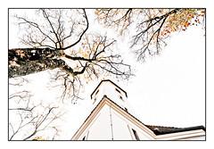 Tree and Church (wide-angle.de) Tags: de germany digital ulmsouth ulm top500 y201212ulmsouthtop500 y201212