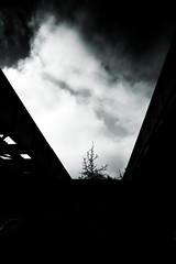 Cielo Gris (Realidad Fragmentada) Tags: bridge sky blackandwhite blancoynegro gris under gray cielo nubes undethebridge