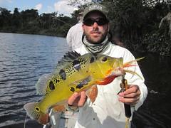 Amazonia 2012 (59)