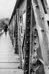 (In) Perspective (DomiKetu) Tags: bridge blackandwhite bw white black monochrome canon 50mm mono blackwhite kodak ae1 steel perspective canonae1 50mmf14 c41 caffenol blackwhitephotos caffenolcm