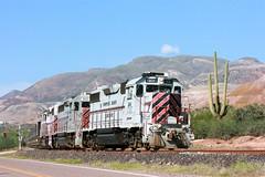 CBRY 501, OT-1, RAY, AZ 10-10-15 (TRAINFLAMES) Tags: arizona train ray locomotive saguarocactus emd kennecottcopper oretrain gp392 raycoppermine copperbasinrailway