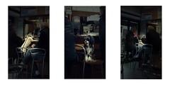 Serie du 27 02 16 : Concarneau (basse def) Tags: dogs concarneau bar