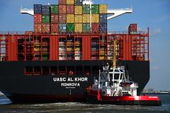 Union Koala and UASC Al Khor DST_4751 (larry_antwerp) Tags: technomar uascalkhor uasc 9710220 tug sleepboot      antwerp antwerpen       port        belgium belgi          schip ship vessel        schelde
