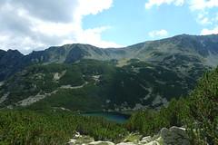P1200279 (lajos.hanyecz) Tags: retezat nationalparks