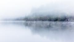 Shallows (rgcxyz35) Tags: morning narrows scotland warning trossachs shallow water mist autumn cross trees lomondtrossachs lochard lochs