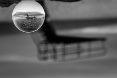 ...TheDiving... (7H3M4R713N) Tags: fujifilm xt1 50140mm xf50140mmf28rlmoiswr monochrome blackandwhite bw crystalball crystal refraction reflection romandie switzerland swiss swtzerland lake