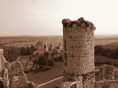 Zamek Ogrodzieniec (Camusi) Tags: europe fall automne september septembre poland pologne routedesnidsdaigle eaglesnestroad castle chateau ruine ruins tower tour fort pierre stone zamek