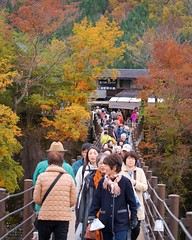 Deai-bashi suspension bridge (Frank Fujimoto) Tags: ogimachi japan bridge