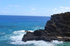 IMG_1259 (michelleingrassia) Tags: halonablowhole blowhole oahu hi hawaii