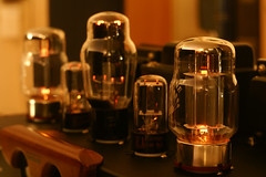 Psvane KT88 x2, RCA 5U4G x1, RCA 6SN7GTB x2 (Sean Anderson Classic Photography) Tags: kt88 5u4g 6sn7 rca a700 industar sonya700 dslr rca6sn7 rca5u4g psvane beamtetrode rectifier industar61lz m42 vacuumtubes valves psvanekt88 doublediodes doubletriodes 30secondsexposure 6sn7gtb 61 lz 50mm 50mmf28