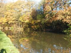 Autumn Colours (Thomas Kelly 48) Tags: leedsliverpoolcanal canal burscough gathurst panasonic lumix fz150