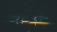 Joakim 4 (PelG) Tags: nightdiving a7rii mitakon water lake diving scubadiving night sony outside outdoor lights dark