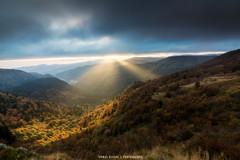 Couleur d'automne (Thomas Devard) Tags: vosges automne montagne sunrise goldenhours landscapephotography paysage massifdesvosges