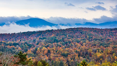 Autumn Blaze (SDRPhoto321) Tags: art air blue canon color colorful clouds city cloud dof dark depthoffield eos expression eye festival great gold green glass haven inspiring light mighty new fog leaves change blueridgeparkway