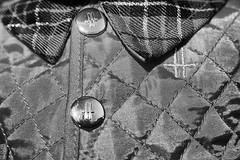 15th MoNovember 16 (cazphoto.co.uk) Tags: monovember monovember16 monochrome blackandwhite nov15 151116 panasonic lumix dmcgh3 panasonic1235mmf28lumixgxvarioasphpowerois coat jacket bear harrods quilted buttons logo h tartan checked